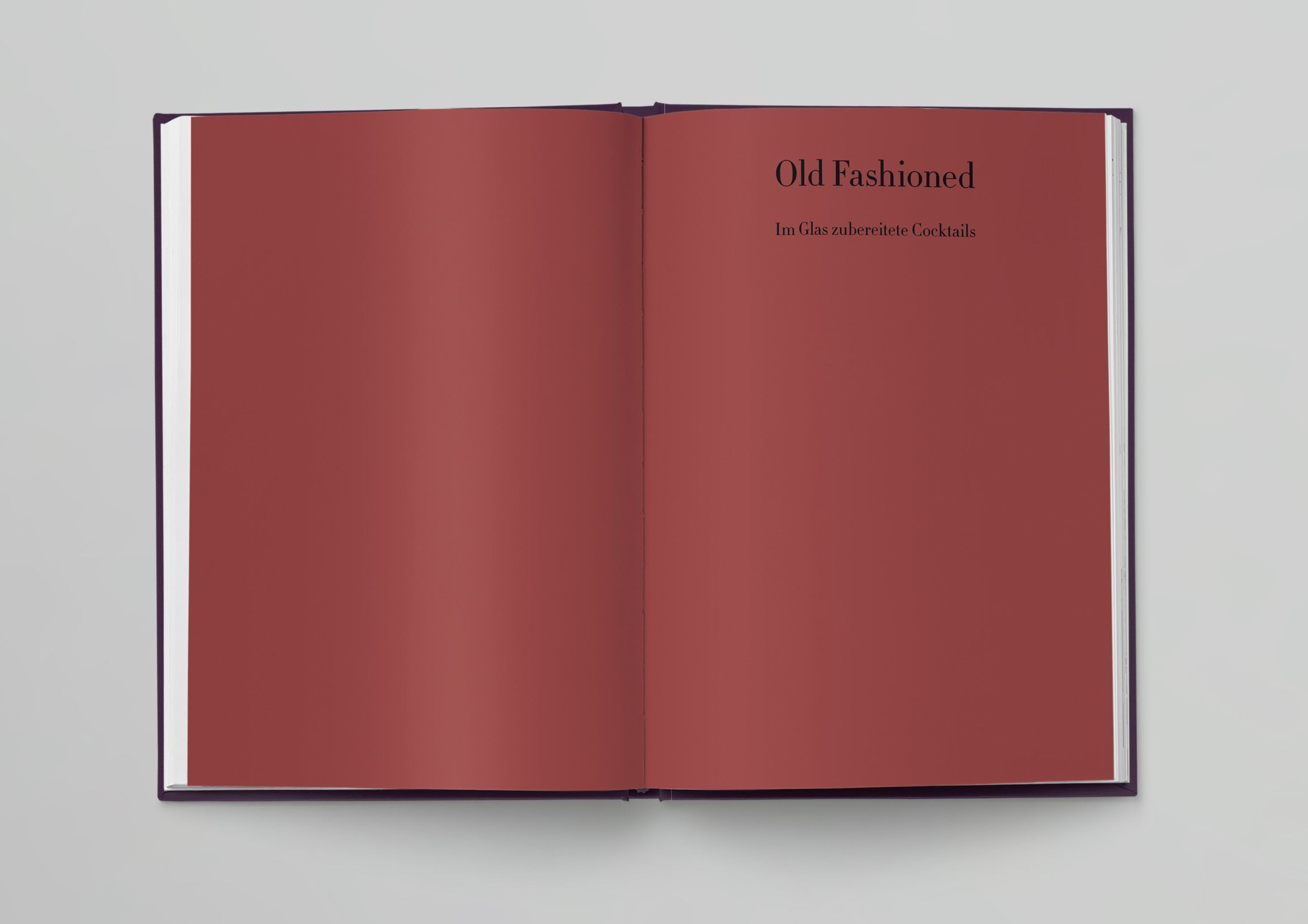 87356-Petraske-Phaidon-Cocktails-Mock-Up-IN02