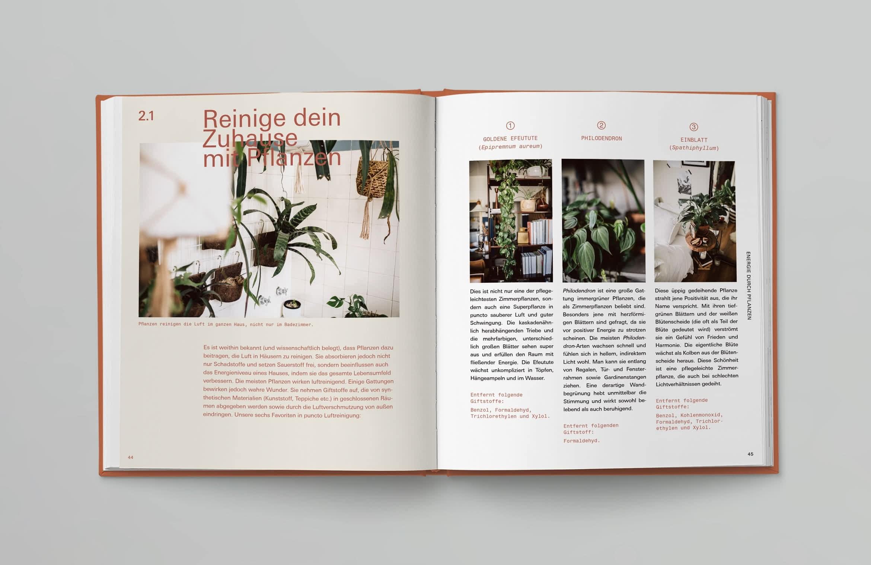 Prestel-Plant-Tribe-IN04
