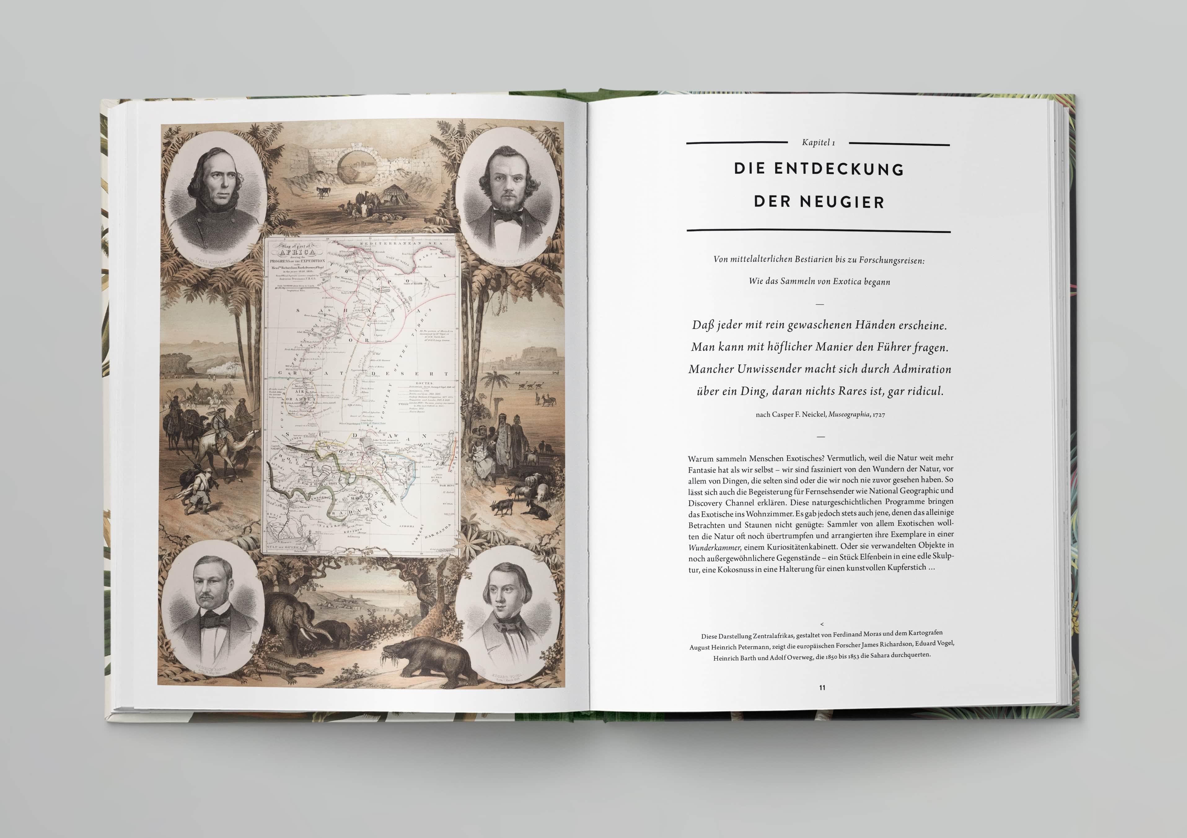 Prestel-Wunderkammer-IN02